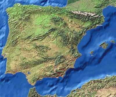 Западное Средиземноморье - лучший пробковые дубы произрастают именно там