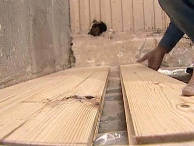 Линолеум укладка своими руками на деревянный пол фото 471