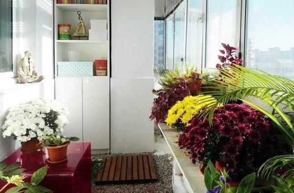 Балкон - оранжерея. На полу мелкий гравий и деревянные щиты